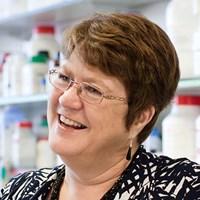 Professor Jane Clarke FMedSci FRS