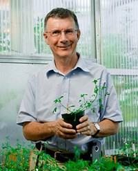Professor Richard Dixon FRS