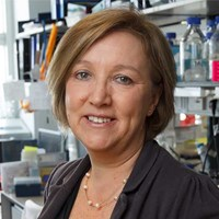 Professor Gillian Griffiths FMedSci FRS