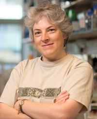 Dr Judy Hirst FMedSci FRS