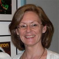 Professor Christine Holt FMedSci FRS