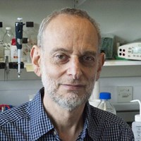 Professor Alan Lehmann CBE FMedSci FRS