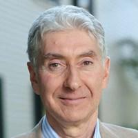 Professor Stephen Mann FRS